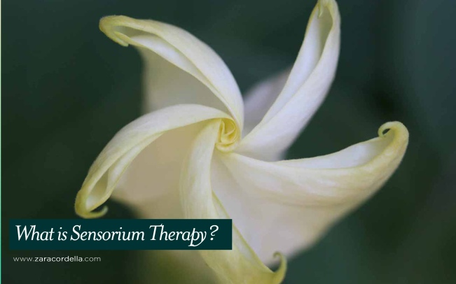 sensorium-therapy